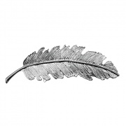 Tallulah - Silver Feather Hairclip